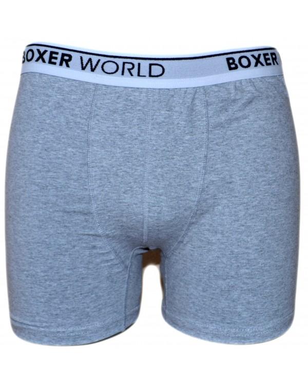 Boxer apatiniai