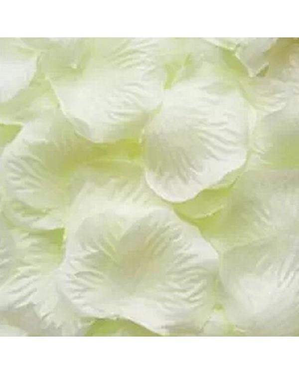 100 gėlių žiedlapių